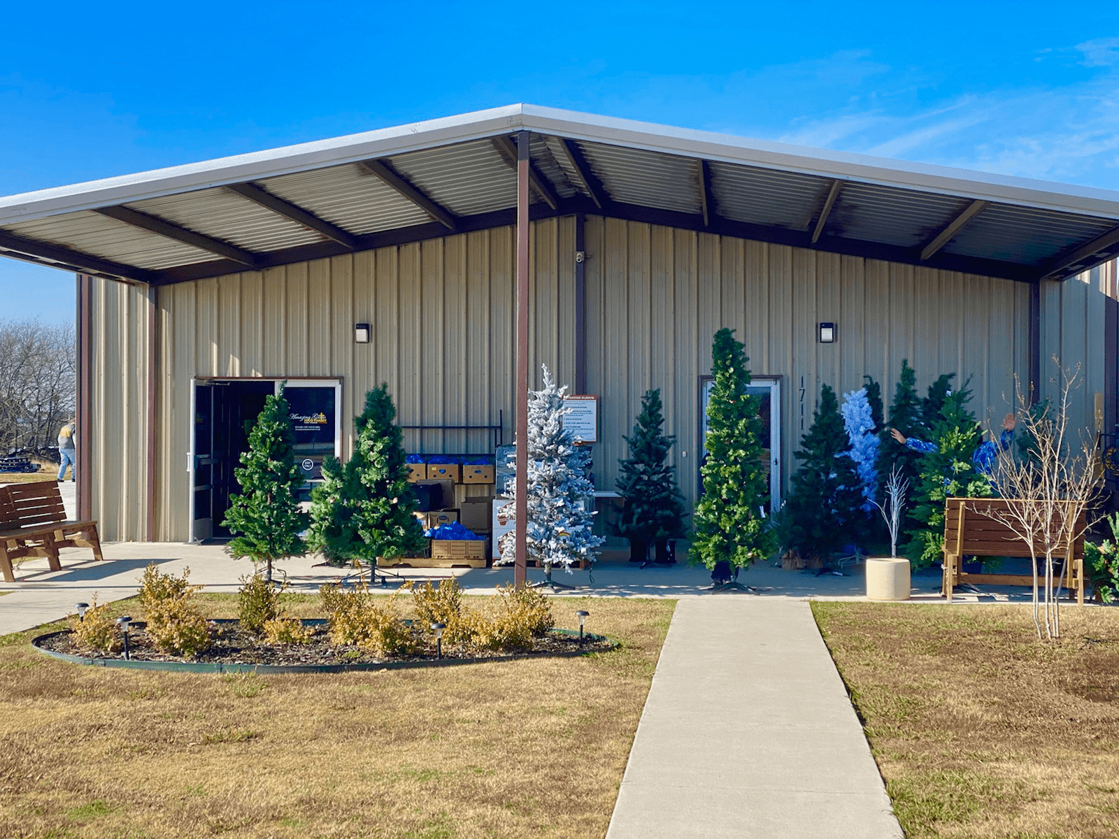 Christmas Trees at Amazing Grace Food Pantry